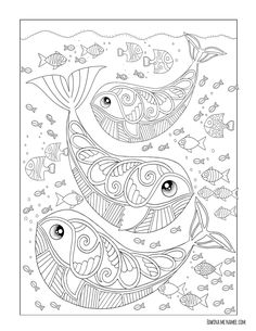 Coloring Books By Edwina Mc Namee Edwinamcnamee Find This Pin And More On Coloriage Zen