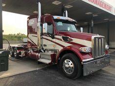 Big Rig Trucks, Semi Trucks, Cool Trucks, Peterbilt 379, Peterbilt Trucks, Custom Big Rigs, Custom Trucks, Trucks And Girls, Buses