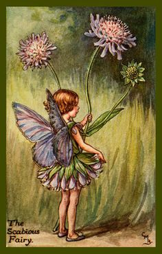 The Scabious Fairy by Cicely Mary Barker from the 1920s. Quilt Block of vintage fairy image printed on cotton. Ready to sew.  Single 4x6 block $4.95. Set of 4 blocks with pattern $17.95.