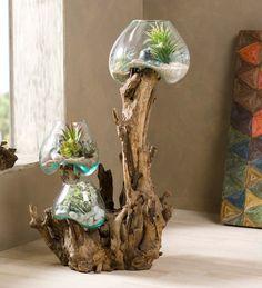 Teak and Blown Glass Branch Vase - Wohnkultur Ideen Garden Terrarium, Glass Terrarium, Teak, Home Aquarium, Decoration Plante, Driftwood Art, Recycled Glass, Resin Crafts, Home Accents