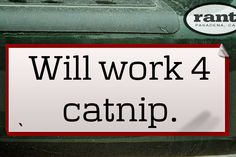 Will work 4 catnip. | A rant by RufustheRantCat on Rant.in