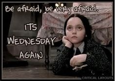 Image result for wednesday addams quotes memes
