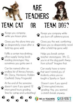 Who's the Real Teacher's Pet: Cats or Dogs?