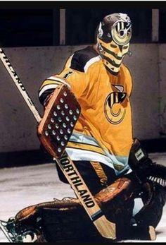 Mike Liut as a Cincinnati Stinger Flyers Hockey, Women's Hockey, Hockey Girls, Hockey Rules, Hockey Stuff, American Football Rules, American Football League, Association Football, Goalie Mask