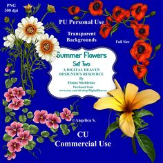 Summer Flowers Set Two - CU Designer Resource For Commercial Use, Personal Use Card Making Scrapbooking etc. - Full Size - PNG by DigitalHeaven on Etsy