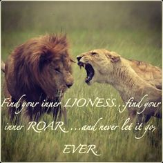 Pinterest: @MazLyons lions and lionesses quotes - Google Search