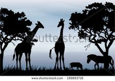 African Scenery Stock Photos, Royalty-Free Images & Vectors ...