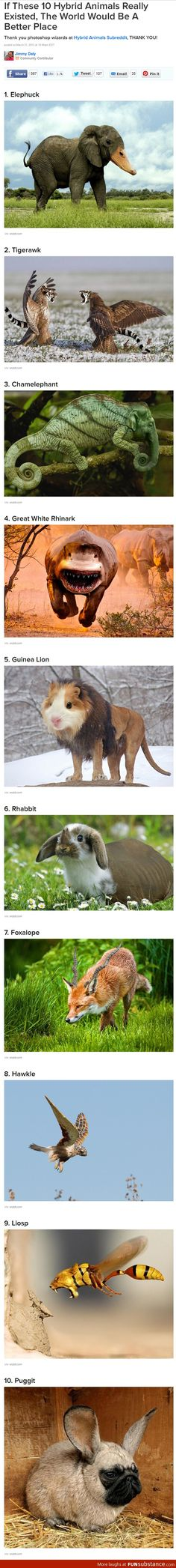 If these animals existed