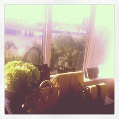 Straight from The Savoy with views over sunny London