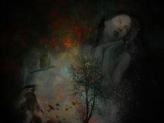 Dreamer bt Kathy Grieb Kennedy flickr