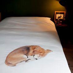 Cute pooch who is a good foot warmer ... or just cute?  Trompe L'oeil bedding