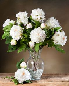 "The ancient Greeks called the Peony the ""queen of all herbs."" To the Chinese, it was the ""king of flowers."" Our lovely, life-like silk peonies will add a welcome burst of color and elegance to your home. Peonies Centerpiece, Flower Centerpieces, Flower Vases, White Flower Arrangements, Artificial Flower Arrangements, Faux Flowers, Silk Flowers, Artificial Plants And Trees, Silk Peonies"