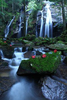 Kanabiki Falls, Kyoto, Japan 金引きの滝