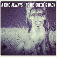 Awwdaaamn! #picoftheday #sickphoto #king #and #queen #lions #den #kingofthejungle #instapic ...