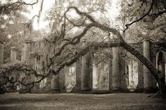 Old Sheldon Church Ruins, located in northern Beaufort County, South Carolina.
