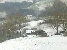 Invierno 2015