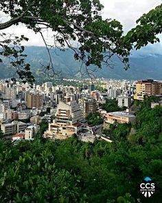 Te presentamos la selección del día: <<POSTALES DE CARACAS>> en Caracas Entre Calles. ============================  F E L I C I D A D E S  >> @alfitips << Visita su galeria ============================ SELECCIÓN @marianaj19 TAG #CCS_EntreCalles ================ Team: @ginamoca @huguito @luisrhostos @mahenriquezm @teresitacc @marianaj19 @floriannabd ================ #postalesdecaracas #Caracas #Venezuela #Increibleccs #Instavenezuela #Gf_Venezuela #GaleriaVzla #Ig_GranCaracas #Ig_Venezuela…