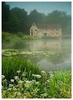 Misty morning.... Sturminster Newton, Dorset, England.