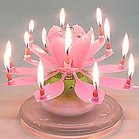 Best ever hy birthday cakes images al flower rotating birthday candle flower birthday candles mexten lotus flower candle birthday party cake best ever hy birthday… Happy Birthday Musik, Happy Birthday To You, Happy Birthday Candles, Birthday Music, Pink Candles, Small Candles, Best Candles, Unique Candles, Lotus Birthday Candle