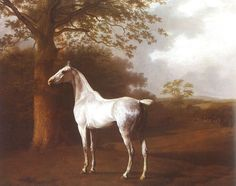 Jacques-Laurent Agasse (1746-1849) The White Horse in Pasture, 1806.