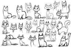 Cats - sketches
