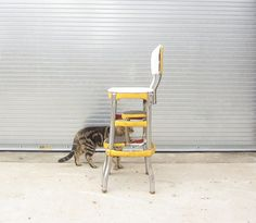 Metal Step Chairs