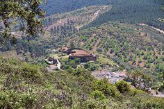 El Sommelier Errante: La empresa Bodega y Viñedos Cerro San Cristóbal, l...