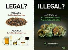 Alcohol vs. Cannabis