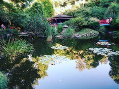 Japanese #garden / #Jardín japonés. #nature #naturaleza #lake #lago #green #verde