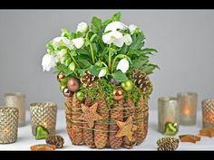 Weihnachts-,Winterdeko/How to-Christrose, Weihnachtsstern dekorieren/festlicher Tischschmuck - YouTube