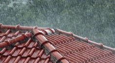 Typická rodina žijúca v dome by využívaním dažďovej vody ušetrila 190 eur ročne. Nebude to však úplne zadarmo.
