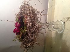 Nest number two by Lisa Trammell. What do you think?
