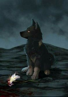 Anime Wolf, Artwork Lobo, Wolf Artwork, Arte Furry, Furry Art, Mythical Creatures Art, Fantasy Creatures, Cute Animal Drawings, Cute Drawings