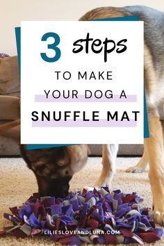 Snuffle mats are an easy to make toy for your dog. It's also great way to slow down eating and provide mental stimulation for your dog. Dog Minding, Make Your Own, Make It Yourself, Diy Dog Toys, Dog Puzzles, Dog Games, Dog Crafts, Dog Activities, Dog Eating