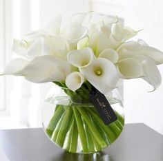 Luxury white calla lily in a glass vase