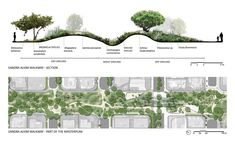 how to draw cross section of landscape | Corredor Verde Recreio #LandscapeDrawing