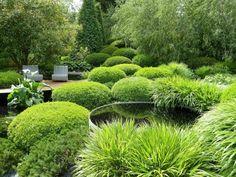 diseño de paisaje con muchas plantas y setos