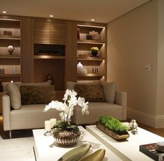 Layout, shelves and lighting.