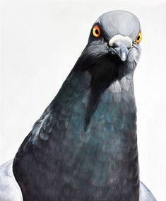 Geary and Larkin - Adele Renault Cute Pigeon, Pigeon Funny, Pigeon Street, Illustrations, Illustration Art, Racing Pigeon Lofts, Pigeon Breeds, Homing Pigeons, Adele