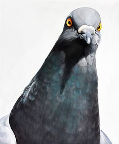 Adele Renault und ihre Tauben