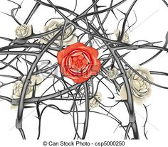 Stock Illustration - red rose and black thorns - stock illustration, royalty free illustrations, stock clip art icon, stock clipart icons, logo, line art, pictures, graphic, graphics, drawing, drawings, artwork
