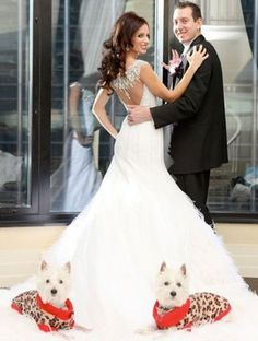 Pets In Weddings | The Knot Blog – Wedding Dresses, Shoes, & Hairstyle News & Ideas