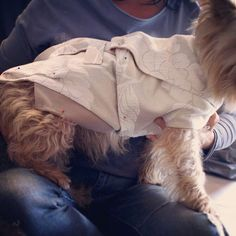 Max is trying on trial version of vest from our 'special' collection.