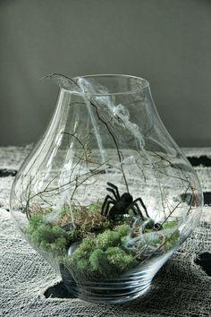 Spooky Terrarium (6) | Ridgely's Radar