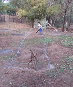 Jungle Cricket !! :)