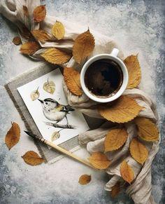 Coffee And Books, I Love Coffee, Coffee Time, Morning Coffee, Cozy Coffee, Morning Gif, Coffee Break, Coffee Shop, Coffee Mugs