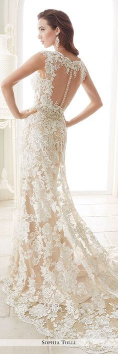 Sophia Tolli Fall 2016 Wedding Gown Collection - Style No. Y21656 Fellini - cap sleeve lace fit and flare wedding dress with illusion back