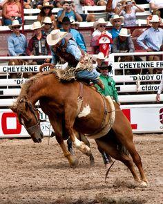 Rodeo / Cheyenne Frontier Days