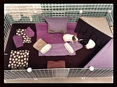C and C cage fleece decorating idea: different shades of purple