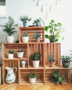 Crates in my living room corner. Crates as plant stands. Succulents and other indoor plants. You are in the right place about Diy Plant Stand, Decor, Living Room Corner, Diy Plants, Home, Interior, Home Diy, Home Decor, House Plants Decor